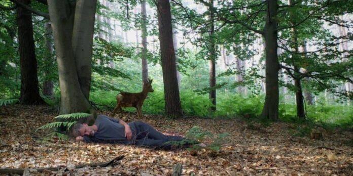 The Wakeful Sleeper, un film de Boris Van der Avoort