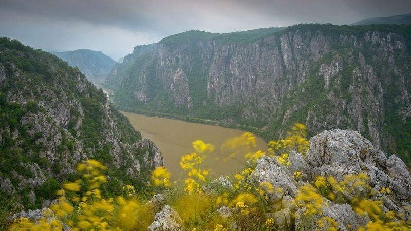 La Roumanie sauvage, un film de Dan Dinu, Cosmin Dumitrache