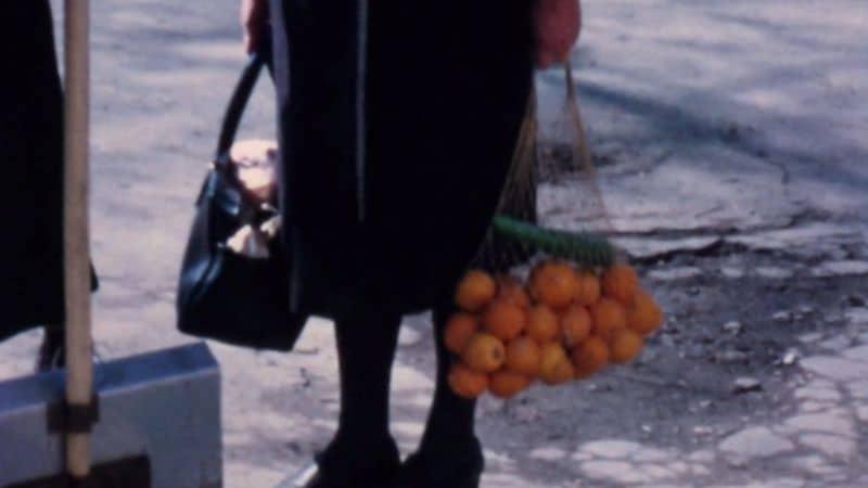 Terra Femme, un film di Courtney Stephens